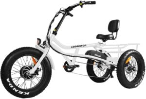 Addmotor Motan Electric Tricycle Bike